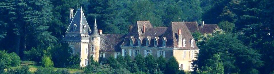 châteaux for sale